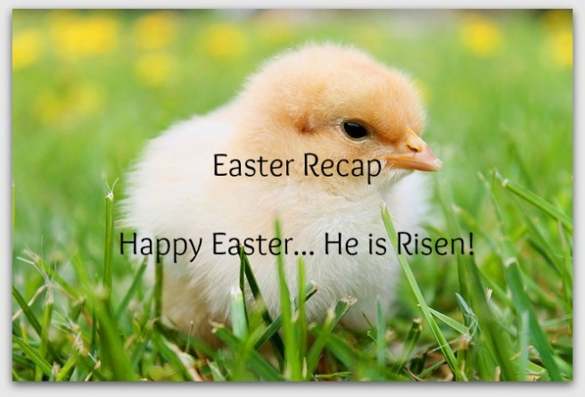 easter reacp header